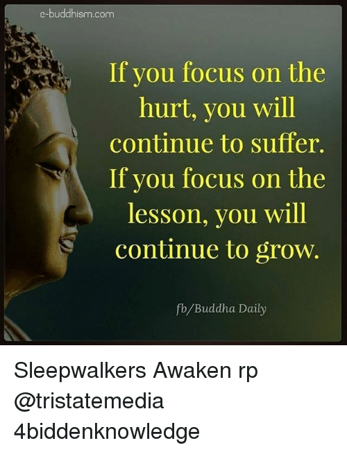 Buddhism: e-buddhism com  If you focus on the  hurt, you will  continue to suffer.  If you focus on the  lesson, you will  continue to grow.  fb Buddha Daily Sleepwalkers Awaken rp @tristatemedia 4biddenknowledge