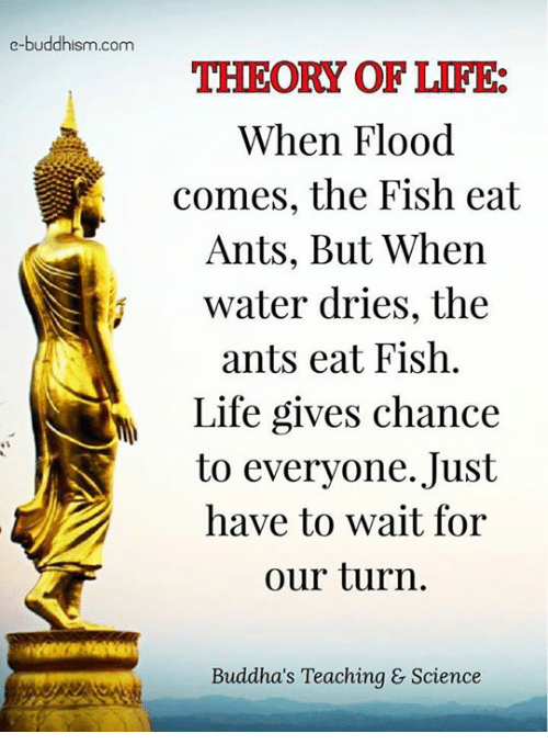 Life: e-buddhism com  THEORY OF LIFE:  When Flood  comes, the Fish eat  Ants, But When  water dries, the  ants eat Fish.  Life gives chance  to everyone. Just  have to wait for  our turn  Buddha's Teaching & Science