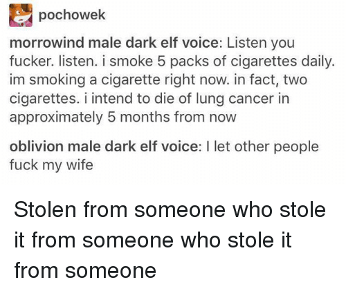 morrowind: E pochowek  morrowind male dark elf voice: Listen you  fucker. listen. i smoke 5 packs of cigarettes daily.  im smoking a cigarette right now. in fact, two  cigarettes. i intend to die of lung cancer in  approximately 5 months from now  oblivion male dark elf voice: l let other people  fuck my wife Stolen from someone who stole it from someone who stole it from someone