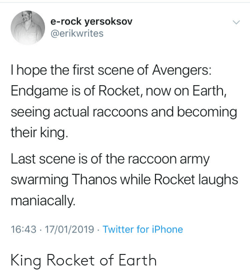 raccoons: e-rock yersoksov  @erikwrites  I hope the first scene of Avengers:  Endgame is of Rocket, now on Earth,  seeing actual raccoons and becoming  their king.  Last scene is of the raccoon army  swarming Thanos while Rocket laughs  maniacally.  16:43 17/01/2019 Twitter for iPhone King Rocket of Earth