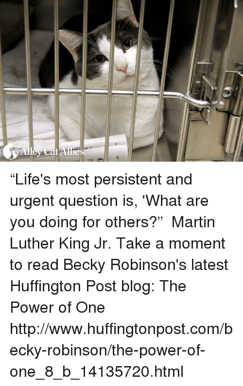 """Martin, Martin Luther King Jr., and Memes: e  sad!( 13 ) """"Life's most persistent and urgent question is, 'What are you doing for others?""""  ― Martin Luther King Jr. Take a moment to read Becky Robinson's latest Huffington Post blog: The Power of One http://www.huffingtonpost.com/becky-robinson/the-power-of-one_8_b_14135720.html"""