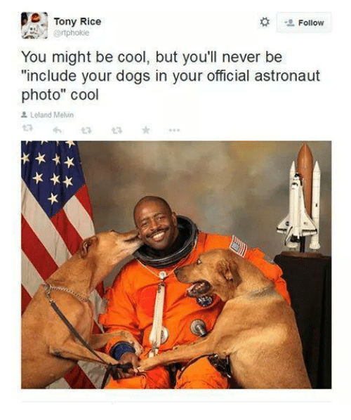 """tony rice: e Tony Rice  Follow  @rtphokie  You might be cool, but you'll never be  """"include your dogs in your official astronaut  photo"""" cool  Leland Metin"""