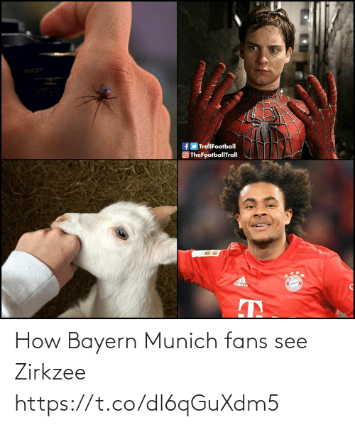 Bayern: e0527  fy TrollFootball  TheFootballTroll  Co  adidas How Bayern Munich fans see Zirkzee https://t.co/dl6qGuXdm5