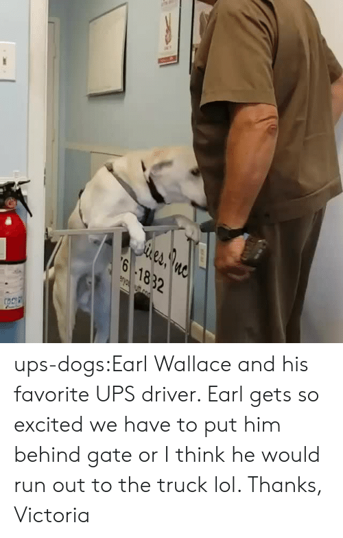Wallace: eA  6 1832 ups-dogs:Earl Wallace and his favorite UPS driver. Earl gets so excited we have to put him behind gate or I think he would run out to the truck lol. Thanks, Victoria