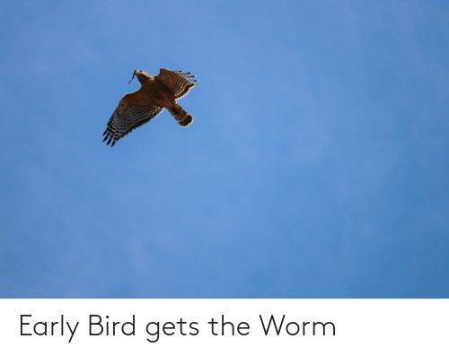 worm: Early Bird gets the Worm