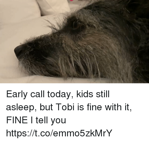 tobi: Early call today, kids still asleep, but Tobi is fine with it, FINE I tell you https://t.co/emmo5zkMrY