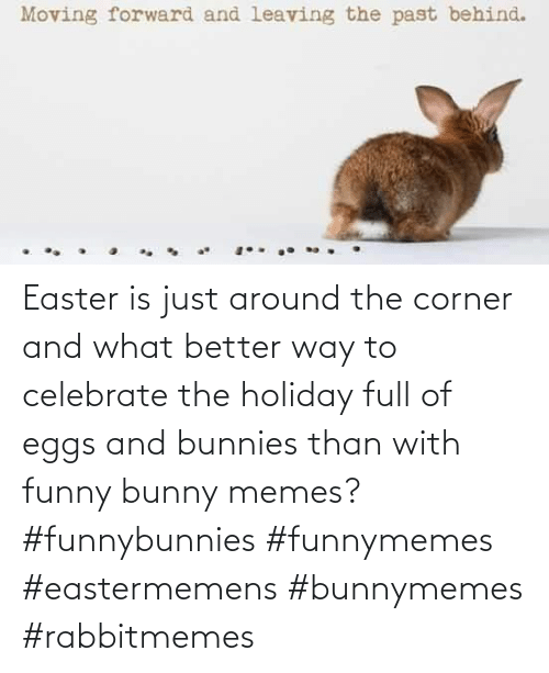 eggs: Easter is just around the corner and what better way to celebrate the holiday full of eggs and bunnies than with funny bunny memes? #funnybunnies #funnymemes #eastermemens #bunnymemes #rabbitmemes