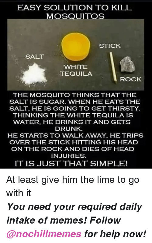 Drunk, Head, and Memes: EASY SOLUTION TO KILL  MOSQUITOS  STICK  SALT  WHITE  TEQUILA  ROCK  THE MOSQUITO THINKS THAT THE  SALT IS SUGAR. WHEN HE EATS THE  SALT, HE IS GOING TO GET THIRSTY  THINKING THE WHITE TEQUILA IS  WATER, HE DRINKS IT AND GETS  DRUNK  HE STARTS TO WALK AWAY, HE TRIPS  OVER THE STICK HITTING HIS HEAD  ON THE ROCK AND DIES OF HEAD  INJURIES  IT IS JUST THAT SIMPLE! At least give him the lime to go with it  <p><b><i>You need your required daily intake of memes! Follow <a>@nochillmemes</a>​ for help now!</i></b><br/></p>