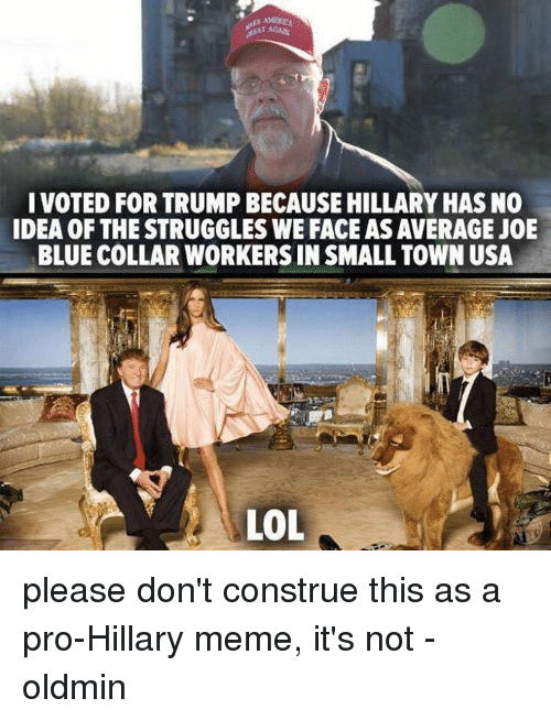 Hillary Meme: EAT AGA  I VOTED FOR TRUMP BECAUSE HILLARY HAS NO  IDEA OF THE STRUGGLES WE FACE AS AVERAGE JOE  BLUE COLLAR WORKERS IN SMALL TOWN USA  LoL please don't construe this as a pro-Hillary meme, it's not -oldmin