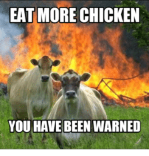 Dave Matthews Happy Birthday: EAT MORE CHICKEN  YOU HAVE BEEN WARNED
