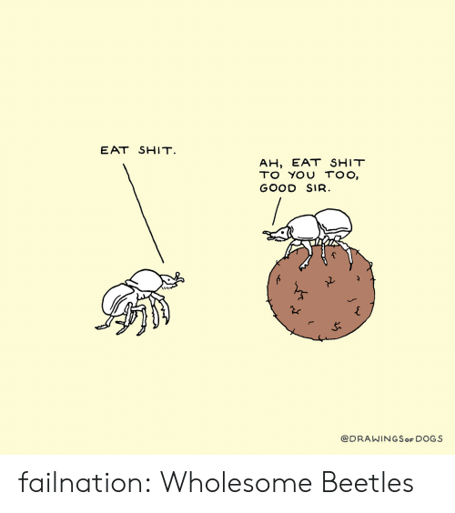 Eat Shit: EAT SHIT.  AH, EAT SHIT  TO YOU TOO,  GOOD SIR.  @DRAWINGSoF DOGS failnation:  Wholesome Beetles