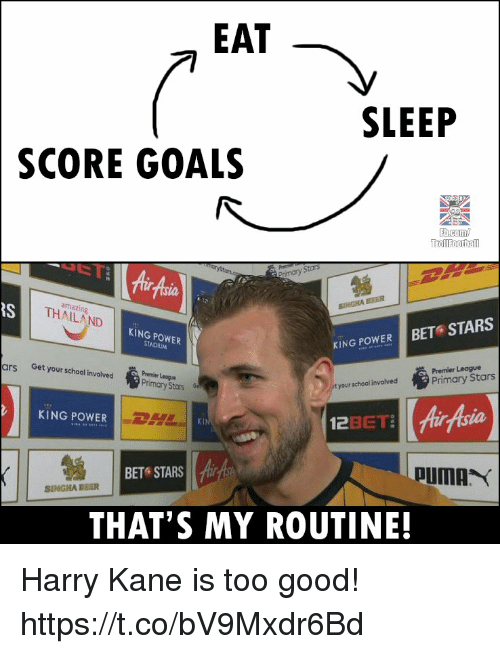 Goals, Memes, and Premier League: EAT  SLEEP  SCORE GOALS  rimary Stors  Air Aia  RS  amazing  THAILAND  KING POWER  KING POWER BET STARS  Premier League  Primary Stars  ars  Get your school invoived  Premler Leogua  Primary Stars  t your school involved  KING POWER  ILI 를  KI  BET STARS  SINGHA BBER  THAT'S MY ROUTINE! Harry Kane is too good! https://t.co/bV9Mxdr6Bd