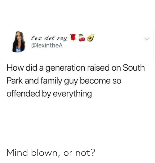 South Park: ec det r  @lexintheA  reyo  How did a generation raised on South  Park and family guy become so  offended by everything Mind blown, or not?