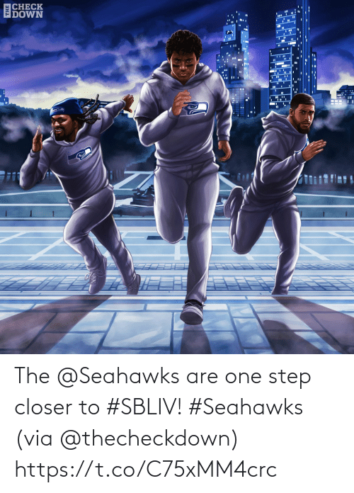 closer: ECHECK  IDOWN  %3D The @Seahawks are one step closer to #SBLIV! #Seahawks  (via @thecheckdown) https://t.co/C75xMM4crc