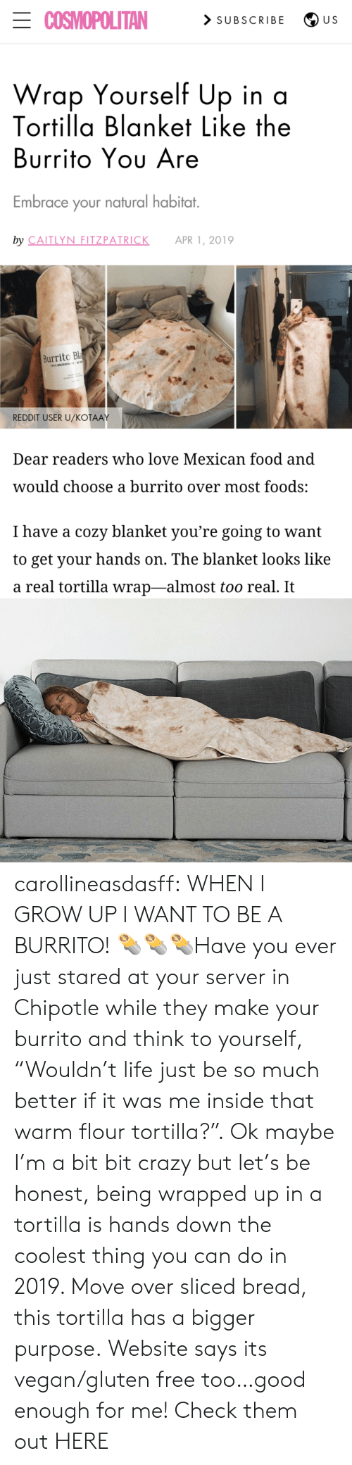 "Mexican: ECOSMOPOLITAN  > SUBSCRIBE  U S  Wrap Yourself Up in a  Tortilla Blanket Like the  Burrito Yου Are  Embrace your natural habitat.  by CAITLYN FITZPATRICK  APR 1, 2019  Burrito Bla  100% MICROFE  REDDIT USER U/KOŤAAY  Dear readers who love Mexican food and  would choose a burrito over most foods:  I have a cozy blanket you're going to want  to get your hands on. The blanket looks like  a real tortilla wrap-almost too real. It carollineasdasff: WHEN I GROW UP I WANT TO BE A BURRITO! 🌯🌯🌯Have you ever just stared at your server in Chipotle while they make your burrito and think to yourself, ""Wouldn't life just be so much better if it was me inside that warm flour tortilla?"". Ok maybe I'm a bit bit crazy but let's be honest, being wrapped up in a tortilla is hands down the coolest thing you can do in 2019. Move over sliced bread, this tortilla has a bigger purpose. Website says its vegan/gluten free too…good enough for me! Check them out HERE"