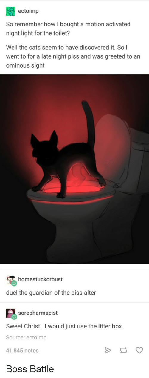 The Guardian: ectoimp  So remember how I bought a motion activated  night light for the toilet?  Well the cats seem to have discovered it. So I  went to for a late night piss and was greeted to an  ominous sight  homestuckorbust  duel the guardian of the piss alter  sorepharmacist  Sweet Christ. I would just use the litter box.  Source: ectoimp  41,845 notes Boss Battle