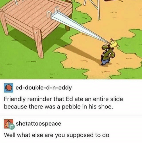 N Eddy: ed-double-d-n-eddy  Friendly reminder that Ed ate an entire slide  because there was a pebble in his shoe.  shetattoospeace  Well what else are you supposed to do
