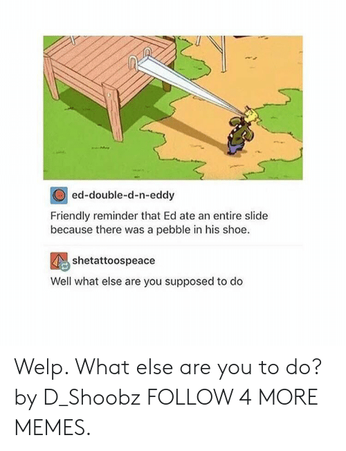 N Eddy: ed-double-d-n-eddy  Friendly reminder that Ed ate an entire slide  because there was a pebble in his shoe  shetattoospeace  Well what else are you supposed to do Welp. What else are you to do? by D_Shoobz FOLLOW 4 MORE MEMES.