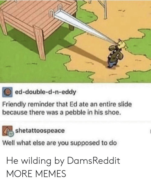 shoe: ed-double-d-n-eddy  Friendly reminder that Ed ate an entire slide  because there was a pebble in his shoe.  shetattoospeace  Well what else are you supposed to do He wilding by DamsReddit MORE MEMES