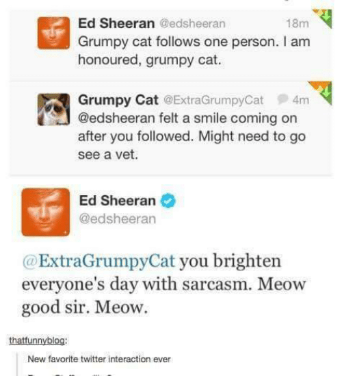 Cats, Ed, Edd N Eddy, and Twitter: Ed Sheeran Gedsheeran  18m  Grumpy cat follows one person. I am  honoured, grumpy cat.  Grumpy Cat ExtraGrumpyCat 4m  @edsheeran felt a smile coming on  after you followed. Might need to go  see a vet.  Ed Sheeran  @edsheeran  ExtraGrumpyCat you brighten  everyone's day with sarcasm. Meow  good sir. Meow.  thatfunnyblog  New favorite twitter interaction ever