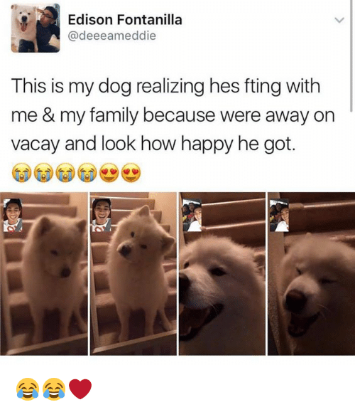 Memes, Edison, and 🤖: Edison Fontanilla  @deeeamed die  This is my dog realizing hes fting with  me & my family because were away on  vacay and look how happy he got. 😂😂❤