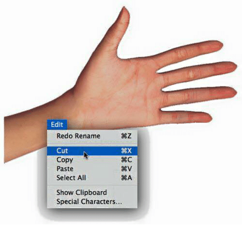 SIZZLE: Edit  Redo Rename  Cut  BEC  Copy  Paste  Select All  Show Clipboard  Special Characters...