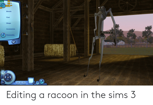 The Sims, The Sims 3, and Sims: Editing a racoon in the sims 3