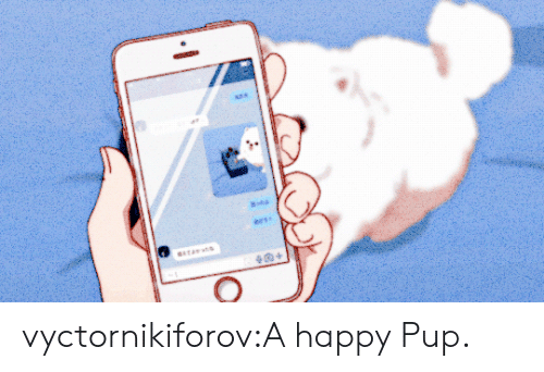 Sta: ees  sTA  + vyctornikiforov:A happy Pup.