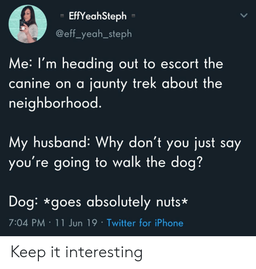Steph: EffYeahSteph  @eff_yeah_steph  Me:I'm heading out to escort the  jaunty trek about the  canine on a  neighborhood.  My husband: Why don't you just say  you're going to walk the dog?  Dog: *goes absolutely nuts*  7:04 PM 11 Jun 19 Twitter for iPhone Keep it interesting