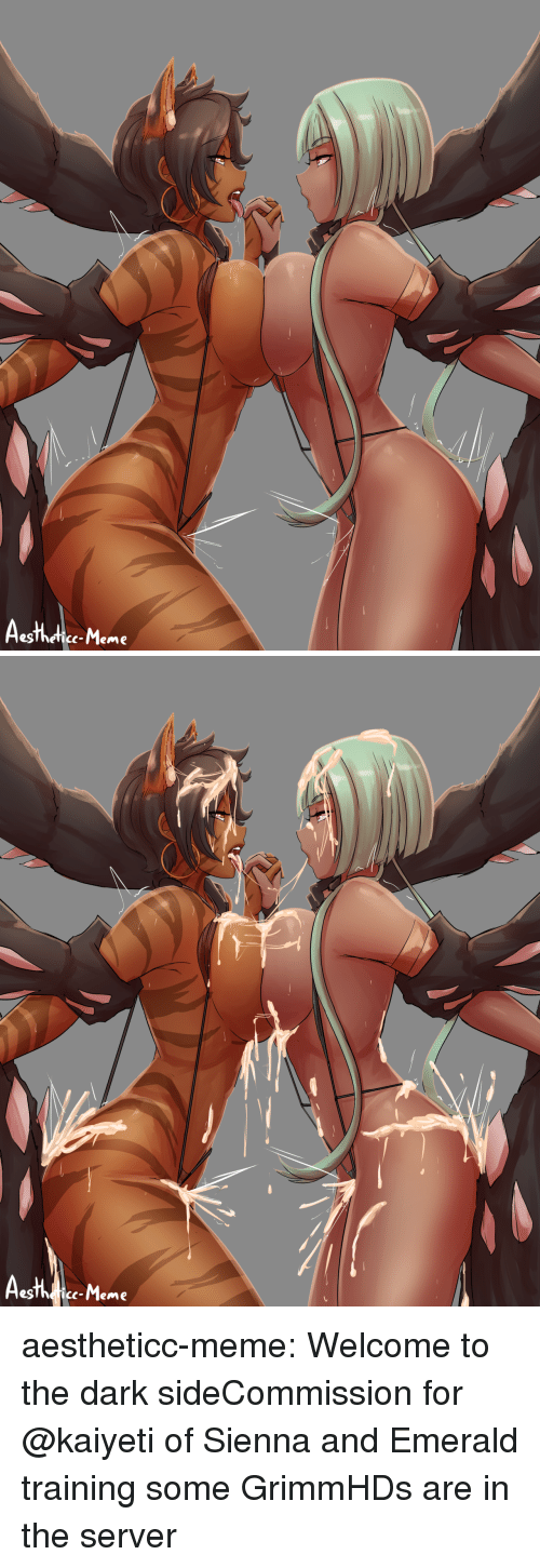 emerald: egThefice-Meme   c-Meme aestheticc-meme:  Welcome to the dark sideCommission for @kaiyeti of Sienna and Emerald training some GrimmHDs are in the server
