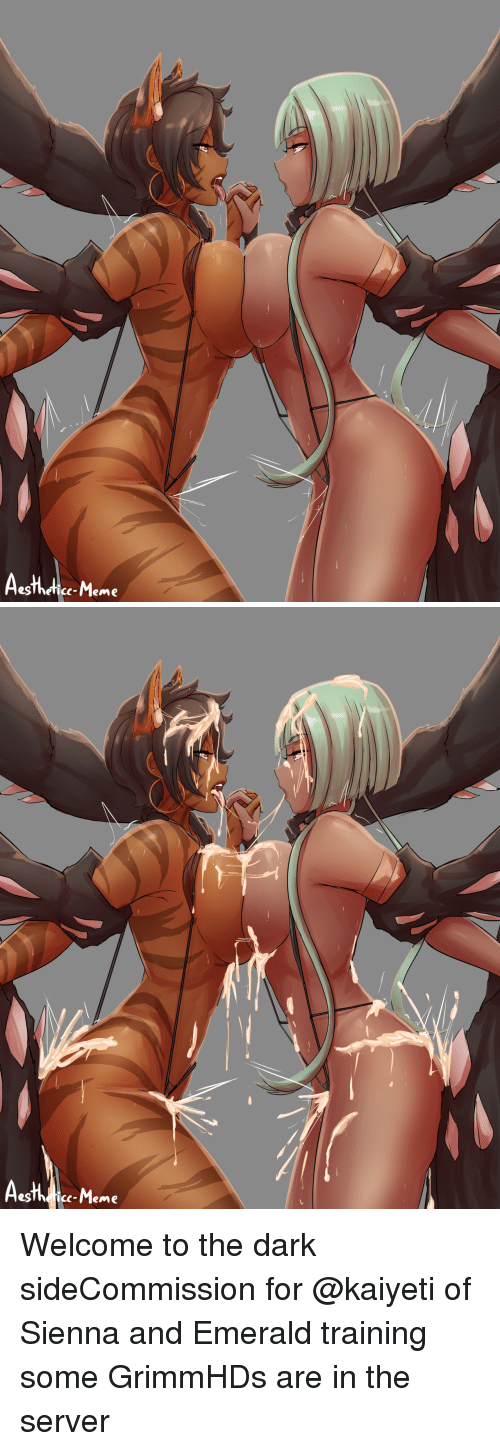 emerald: egThefice-Meme   c-Meme Welcome to the dark sideCommission for @kaiyeti of Sienna and Emerald training some GrimmHDs are in the server