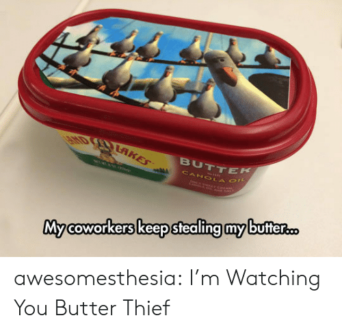 im watching you: EHD RAKES  BUTTEK  CANOLA O  Mycoworkers keep stealing my butter... awesomesthesia:  I'm Watching You Butter Thief