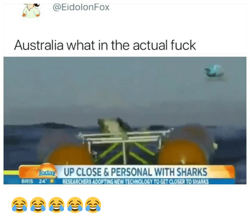 Australia, Fuck, and Sharks: @EidolonFox  Australia what in the actual fuck  aday UP CLOSE&PERSONAL WITH SHARKS  BRIS 24RESEARCHERS ADOPTING NEW TECHNOLOGY TO GET CLOSER TO SHARKS 😂😂😂😂😂