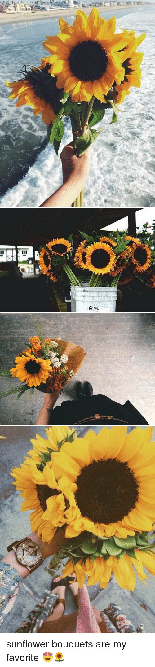 Sunflowering: EII  CP CUTLF  GP CUTLF  III sunflower bouquets are my favorite 😍🌻
