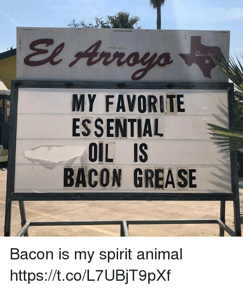 Funny, Animal, and Grease: El Arroya  MY FAVORITE  ESSENTIAL  OIL IS  BACON GREASE Bacon is my spirit animal https://t.co/L7UBjT9pXf
