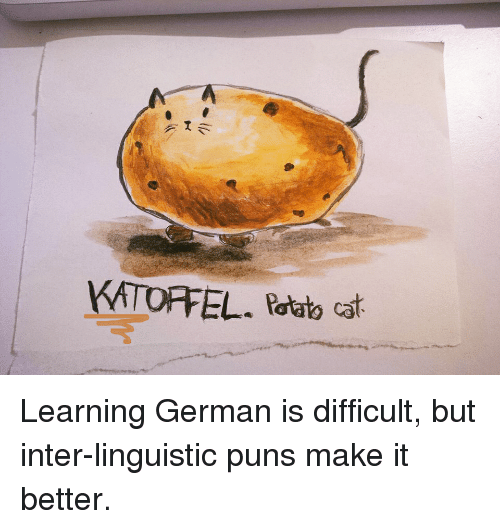 Cats, Funny, and Puns: EL. potato cat Learning German is difficult, but inter-linguistic puns make it better.