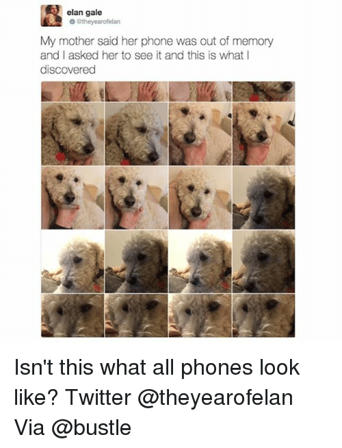 Memes, 🤖, and Mother: elan gale  they earofelan  My mother said her phone was out of memory  and I asked her to see it and this is what I  discovered Isn't this what all phones look like? Twitter @theyearofelan Via @bustle