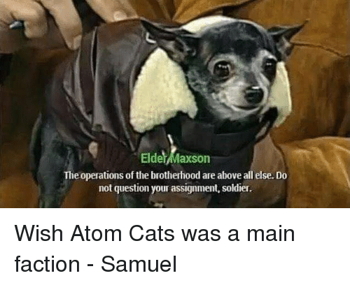 Elder Maxson: Elder Maxson  The operations of the brotherhood are above all else. Do  not question your assignment, soldier Wish Atom Cats was a main faction - Samuel