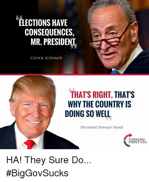 Elections: ELECTIONS HAVE  CONSEQUENCES,  MR. PRESIDENL  CHUCK SCHUMER  THAT'S RIGHT. THATS  WHY THE COUNTRY IS  DOING SO WELL  PRESIDENT DONALD TRUMIP  TURNING  POINT USA HA! They Sure Do... #BigGovSucks
