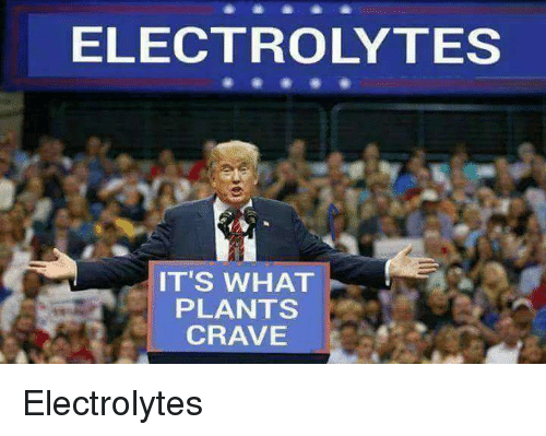 Its What Plants Crave: ELECTROLYTES  IT'S WHAT  PLANTS  CRAVE Electrolytes