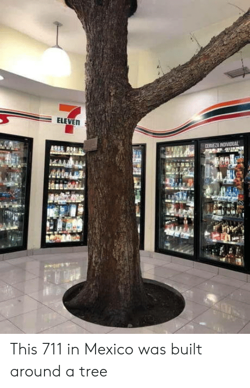 Cerveza: ELEVEN  CERVEZA INDIVIDUAL This 711 in Mexico was built around a tree