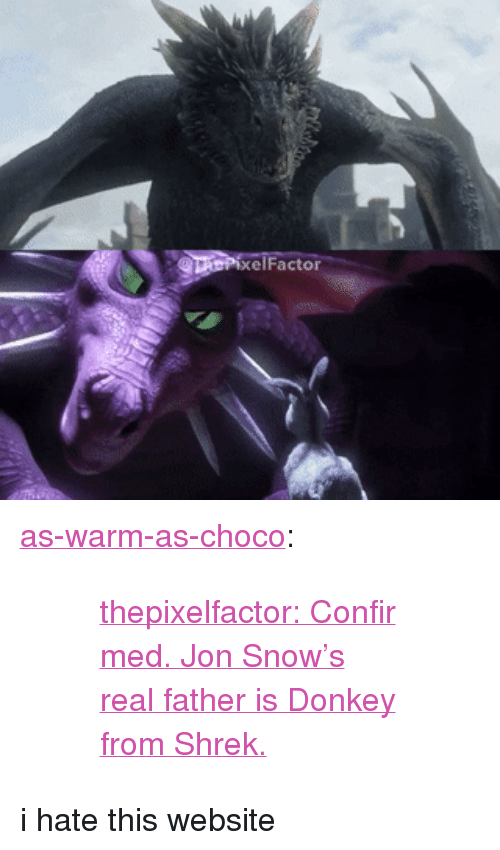 """donkey from shrek: elFactor <p><a href=""""http://as-warm-as-choco.tumblr.com/post/164270164383/thepixelfactor-confirmed-jon-snows-real-father"""" class=""""tumblr_blog"""" target=""""_blank"""">as-warm-as-choco</a>:</p> <blockquote><blockquote><p><a href=""""https://www.instagram.com/p/BX0Os1vlsC3/"""" target=""""_blank"""">thepixelfactor:Confirmed. Jon Snow's real father is Donkey from Shrek.</a></p></blockquote></blockquote> <p>i hate this website</p>"""