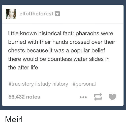 Slides In: elfoftheforest+  little known historical fact: pharaohs were  burried with their hands crossed over their  chests because it was a popular belief  there would be countless water slides in  the after life  #true story i study history #persona1  56,432 notes Meirl