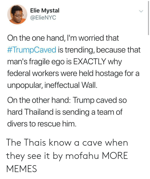 Thailand: Elie Mystal  @ElieNYOC  On the one hand, l'm worried that  #TrumpCaved is trending, because that  man's fragile ego is EXACTLY why  federal workers were held hostage for a  unpopular, ineffectual Wall.  On the other hand: Trump caved so  hard Thailand is sending a team of  divers to rescue him The Thais know a cave when they see it by mofahu MORE MEMES