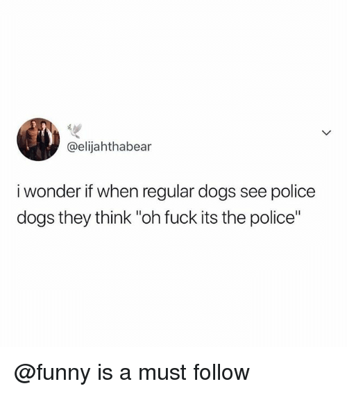 """Fuck Its: @elijahthabear  i wonder if when regular dogs see police  dogs they think """"oh fuck its the police"""" @funny is a must follow"""
