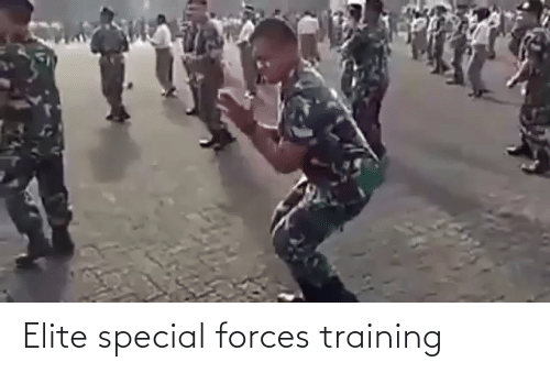special forces: Elite special forces training