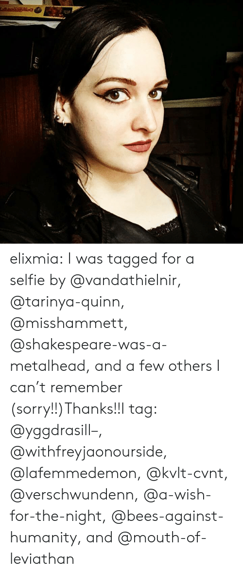 Leviathan: elixmia:  I was tagged for a selfie by @vandathielnir, @tarinya-quinn, @misshammett, @shakespeare-was-a-metalhead, and a few others I can't remember (sorry!!)Thanks!!I tag: @yggdrasill–, @withfreyjaonourside, @lafemmedemon, @kvlt-cvnt, @verschwundenn, @a-wish-for-the-night, @bees-against-humanity, and @mouth-of-leviathan