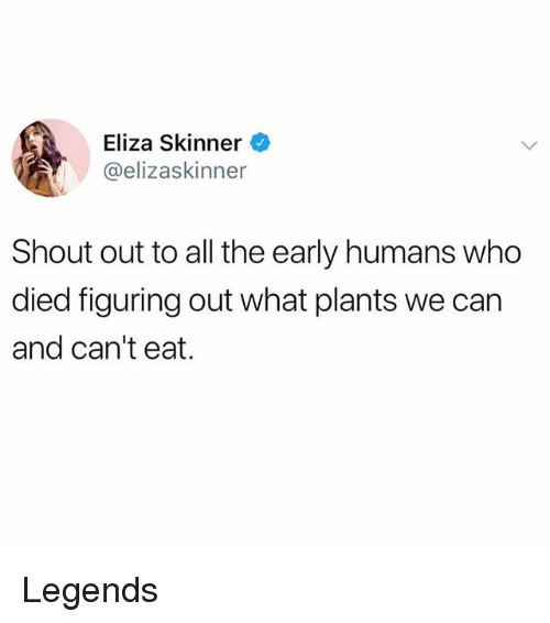 Skinner: Eliza Skinner  @elizaskinner  Shout out to all the early humans who  died figuring out what plants we can  and can't eat. Legends