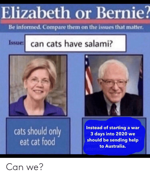 elizabeth: Elizabeth or Bernie?  Be informed. Compare them on the issues that matter.  Issue: can cats have salami?  Instead of starting a war  3 days into 2020 we  should be sending help  cats should only  eat cat food  deserv  to Australia.  attention Can we?