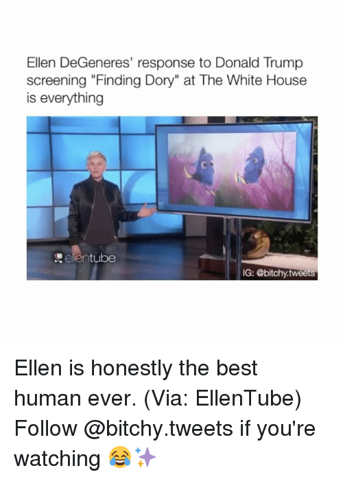 "white houses: Ellen DeGeneres' response to Donald Trump  screening ""Finding Dory"" at The White House  is everything  tube  IG: @bitchy tweets Ellen is honestly the best human ever. (Via: EllenTube) Follow @bitchy.tweets if you're watching 😂✨"